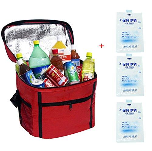Outdoor-Kühltasche mit 3 Kühlpäckchen, isoliert für 10–24 Stunden, rot (Handtasche Legen Geldbörse Organizer)