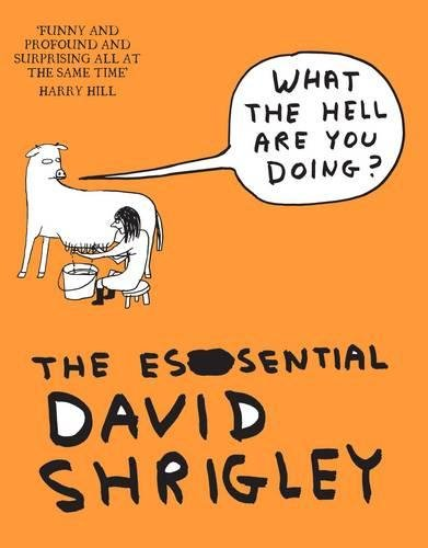 What The Hell Are You Doing?: The Essential David Shrigley por David Shrigley