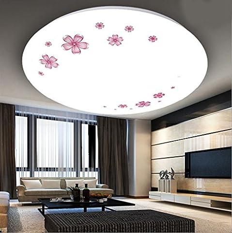 Miaoge Ingénierie LED lampe plafond moderne minimaliste acrylique rond lampes salon chambre à coucher den balcon lumières allée 28cm 12W