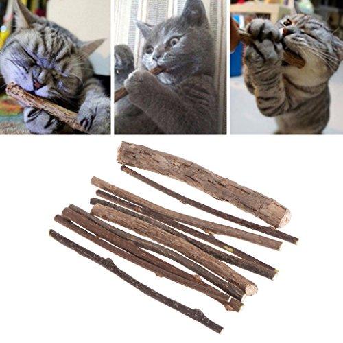 ECMQS 10 stücke Katzenspielzeug Reinigung Zähne Reine Natürliche Katzenminze Snacks Haustier Katze Molaren Zahnpasta Stick Natürliche Spielzeug für Katzen