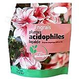 engrais plantes acidophiles (ou plantes de terre de bruyère)