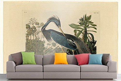 Roshni Arts®-Parete Curated Art Audubon-Louisiana Heron-217| Piastra vinile autoadesivo Mobili