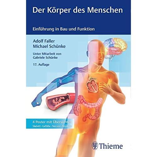 PDF] Der Körper des Menschen - Einführung in Bau und Funktion ...