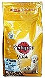 PEDIGREE 2 kg Tasche. Dry Junior-Huhn / Reis - Hundefutter