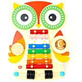 A perfect gift for the little musician! An eye-catching, unique owl-shaped musical instrument set, complete with: cymbal, drums, xylophone and guiro.  The two beaters are perfectly sized for little hands and can be safely stored in the owl's ...