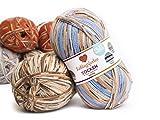 Lieblingsfarben Socken-Wolle 4-fädig Häkel-Strickgarn für Strümpfe je 100 g pro Knäuel und 420 m Lauflänge, maschinenwaschbar bis 40 Grad (Helga)