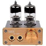 DollaTek 6J9 Vakuumröhre Vollverstärker Mini Stereo HiFi Kopfhörer Audio Verstärker DIY