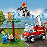 LEGO-City-Barbecue-in-fumo-60212