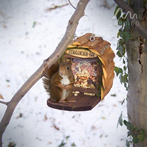 Gardigo Eichhörnchen-Bar Futterspender aufhängbares Futterhaus aus Holz naturfarben - 5
