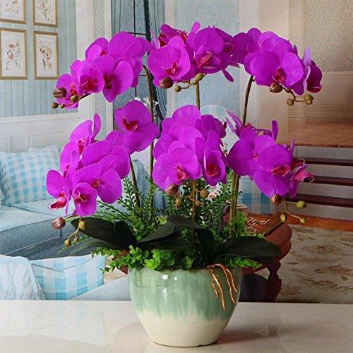 Jnseaol Kunstblumen Orchidee Keramik Topf Diy Hochzeit Hotel Party Küche Home Fensterbrett Eine Große Dekoration Muttertag Geschenk Lila -06