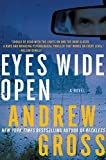 Eyes Wide Open by Andrew Gross (2011-07-12)