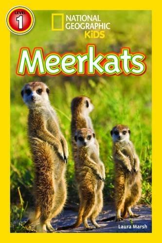 Image of Meerkats (National Geographic Readers)