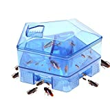 #8: Shopo's Reusable Plastic Cockroach Fall Box Bug Catcher For House Kitchen
