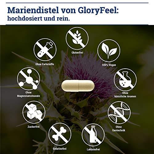 GloryFeel® Mariendistel 4-Fach Komplex – 80% Premium-Sylmarin Plus Artischocke, Löwenzahn und Desmodium – 120 vegane Kapseln – Ohne Zusätze, Laborgeprüfte Herstellung in Deutschland