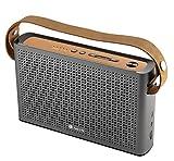 Ngs Roller Byron 360Radio FM/USB/BT 360 Alu+Cuir