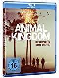 Animal Kingdom Staffel 1 [Blu-ray]
