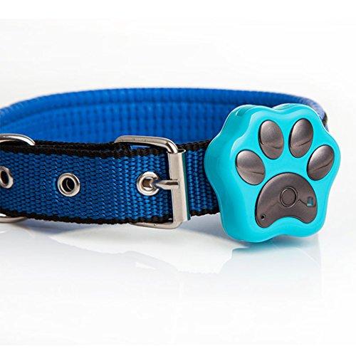 Enshey GPS-Tracker für Hund und Katze Haustier GPS-Leds blinken Halsband Anti-verlorene Tracker Wifi Sicherheit Alarm wasserdicht blau