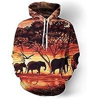 Elefante Buda 3D por Todo Sudaderas con Capucha Impresas Sudadera Hipster Street Wear Hip Hop Top