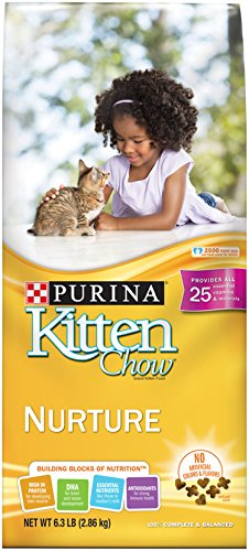 purina-kitten-chow-dry-kitten-food-nurture-63-pound-bag-by-purina-cat-chow