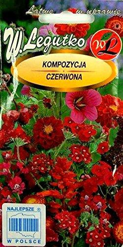 Rouge plantes Mélange de graines