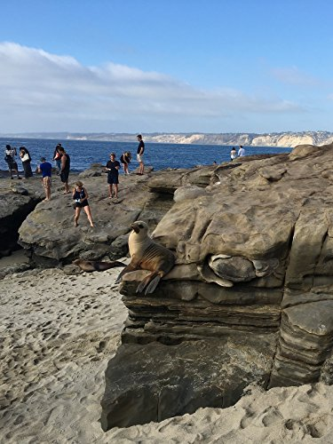 hiking-with-valentine-beaches-at-san-diego