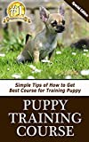 Puppy Training Course: Simple Tips of How to Get Best Course for Training Puppy
