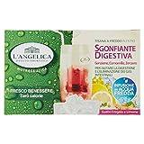 L'Angelica Tisana a Freddo Sgonfiante Digestiva con Fragola e Limone - 33 gr