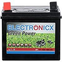 Electronicx® U1(9) 30AH 300A (EN) Green Power Batterie für Aufsitzrasenmäher, Gartengeräte, Starterbatterie, Wartungsfrei, Calcium Technologie