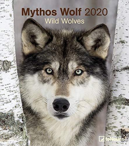 Mythos Wolf 2020