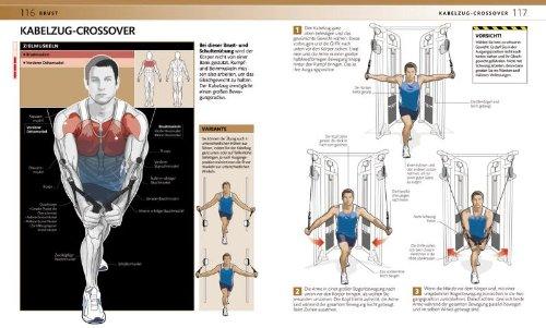 Krafttraining: Muskelaufbau – Fitness – Gesundheit