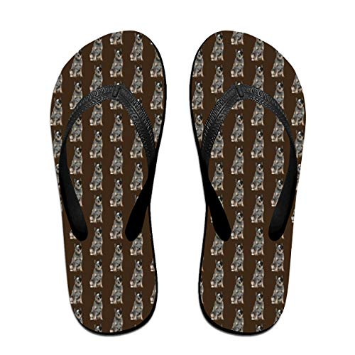Australian Cattle Dog Flip Flops Rubber Thong Sandal Beach Slipper for Women/Men S