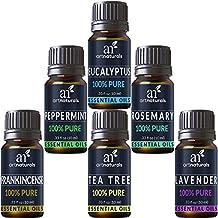 ArtNaturals Aromatherapy Top-6 Aceites esenciales - (6 botellas de 10 ml) - 100% puro de la más alta calidad - Hierbabuena, árbol de te, romero, lavanda, eucalipto e incienso - Grado terapéutico