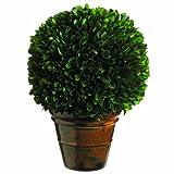 Seide Decor konserviert, Buchsbaum Ball Pflanze, 26cm, grün