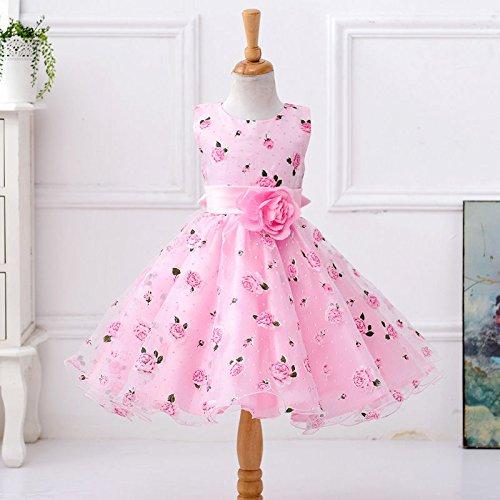 zooarts Kind Kinder Mädchen Floral Princess Fancy Dress Outfit Kostüm Mädchen Kleidung, multi, 2-3 (Dress Hohe Kostüme Fancy Qualität)