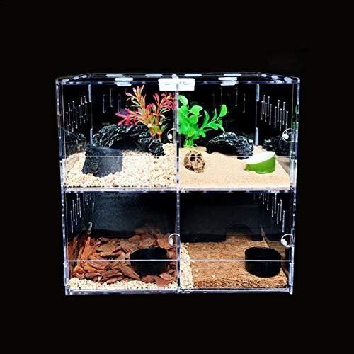 Eillybird Reptilien Zucht Kasten transparente Acryl Terrarium Reptilien Aufzucht Fütterung Box Transportbox