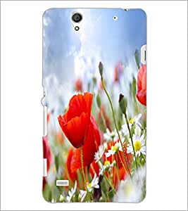 PrintDhaba Flower D-2252 Back Case Cover for SONY XPERIA C4 (Multi-Coloured)