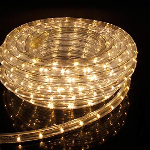 12Mete LED Lichterschlauch Lichtschlauch Lichterkette Licht Leiste 36LEDs/M und Außenbereich Lauflichter für Saal,Garten, Weihnachten, Hochzeit,Party - Warmweiß Lichtschläuche (Warmweiß)
