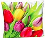 weiche KISSENHÜLLE 40x40 cm Tulpen bunt Kurzvelours Soft Touch Polyester Deko-kissen Kissen-bezug TREND FOTOprint Kissen Frühling Sommer Herbst (Tulpenwiese Rot Gelb Bunt)