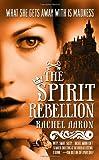 The Spirit Rebellion (The Legend of Eli Monpress, Band 2)