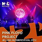 Shine on You Crazy Diamond (Live Jelling Musikfestival 2012)