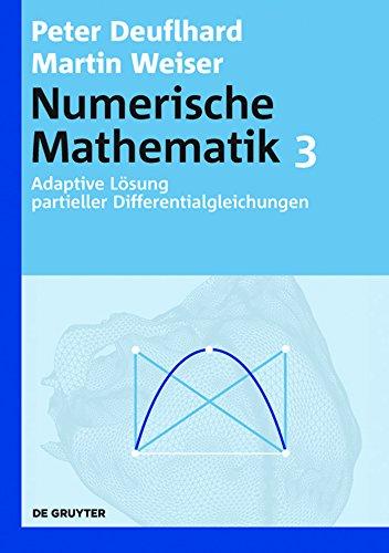 Adaptive Lösung partieller Differentialgleichungen: [Band] 3 (De Gruyter Lehrbuch)