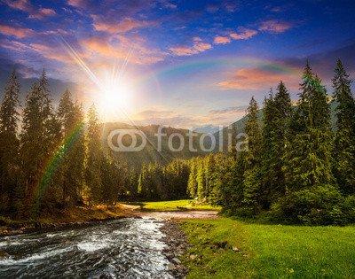 mountain-river-en-pine-forest-at-de-la-puesta-del-sol-75106384-lona-100-x-80-cm