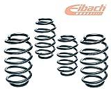 Eibach E10-15-021-02-22- Pro-Kit Federn Leistung