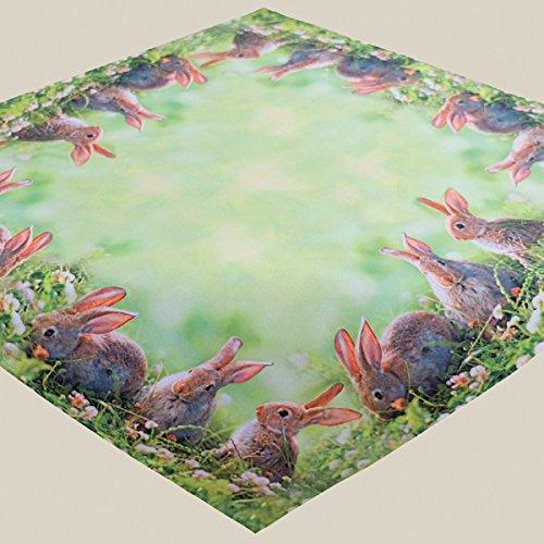 Kamaca Serie Hasen Trio mit süßen Häschen Trendiger Fotodruck Eyecatcher Frühling Ostern (Mitteldecke 85x85cm)