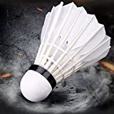 #2: Feather Badminton ShuttleCocks with Great Stability and Durability,Indoor Outdoor Or Sports High Speed Training Badminton Birdies Balls Pack OF 10 By R.P.M Sport