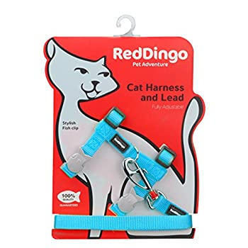 Red Dingo Laisse/Harnais pour Chat Turquoise