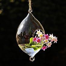 Bluelover Colgante forma de oliva vidrio florero jardín hidropónico plantas maceta
