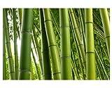 Fenster Wandbild Bamboo Trees No. 1Fenster Aufkleber Fensterfolie Fenster Tattoo Glas Aufkleber Fenster Kunst Fenster Décor Fenster Dekoration, Maße: 15cm x 22cm