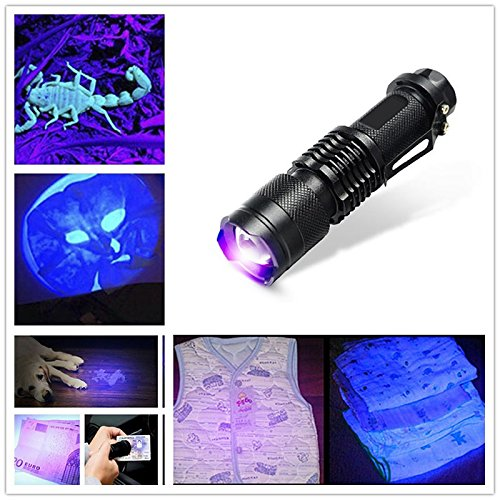BeesClover UV-Taschenlampe für Camping, Jagd, Wandern