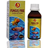 Pet Care International Aquarium Medicine Fungus Free Anti-Fungus for Healthy Fish Care (100ml)